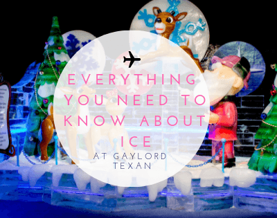 EVERYTHING You Need to Know about ICE at Gaylord Texan