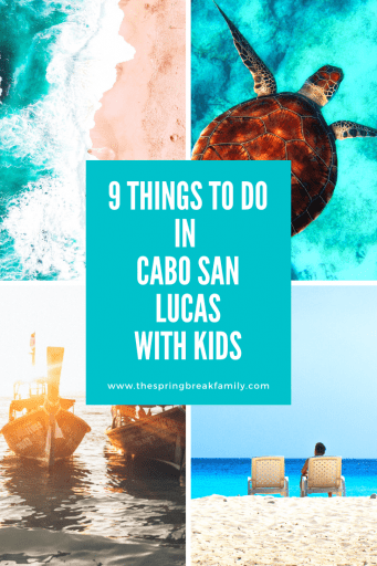 9 Things to do in Cabo With Kids - Pinterest