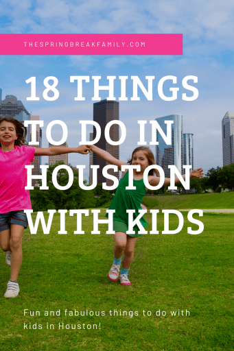 Pinterest Pin - Things to do in Houston with kids (Secondary)