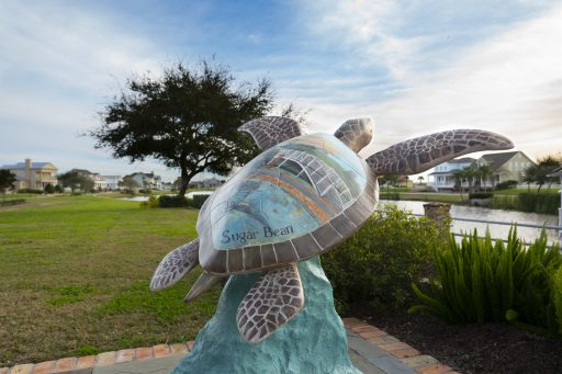 Free things to do in Galveston - Turtles About Town